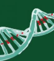 Molecular technologies