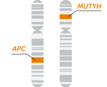 FAP MASTR - Multiplicom
