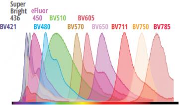 Violet dyes  tested
