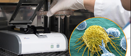 Cancer immunotherapy: Macrophage-mediated phagocytosis
