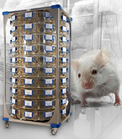 Motor free IVC rodent caging